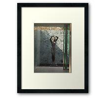 The Barcelona Pavillion Framed Print