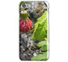 Butchart Gardens, Victoria, Canada 11 iPhone Case/Skin
