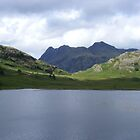 Blea Tarn by monkeyferret