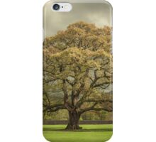 The Old Oak of Glenridding iPhone Case/Skin