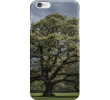 The Old Oak of Glenridding v2.0 iPhone Case/Skin