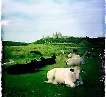 Dunstanburgh Castle and Cows by Woodsculptor