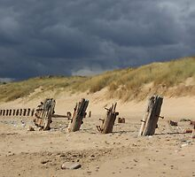 Weathered remains, Spurn Point by Neil Clarke