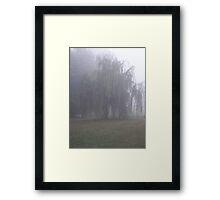misty willow Framed Print
