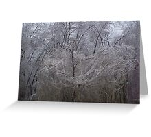 icy willow Greeting Card