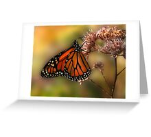 A Monarch Afternoon Greeting Card