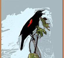 Redwing Blackbird by George  Link