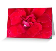 Really Ruby Red Greeting Card