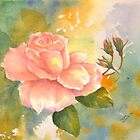 Sun Kissed Rose by Nora Mackin