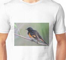 American Redstart Unisex T-Shirt