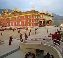 Monastery life - Dzongsar Institute, Bir, India by mindahb