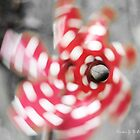 Whirly Windmill by aruni