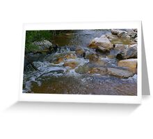 The flow of nature Greeting Card