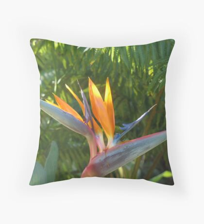 Now... Throw Pillow
