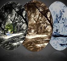 """Back Road"" by Tim&Paria Sauls"