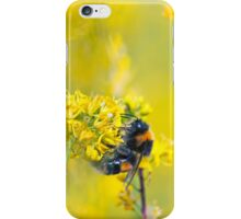 Bee Happy in Yellow iPhone Case/Skin