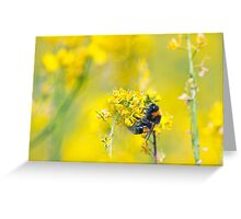 Bee Happy in Yellow Greeting Card