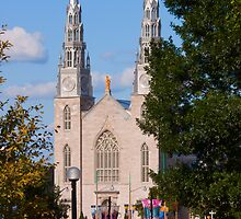 Notre Dame Basilica - Ottawa, Canada by Josef Pittner