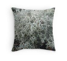 Tumbleweed Lichen Throw Pillow