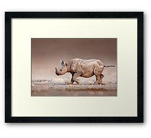Black Rhinoceros baby running Framed Print