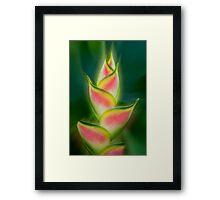 Tropical exotic Framed Print