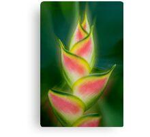 Tropical exotic Canvas Print