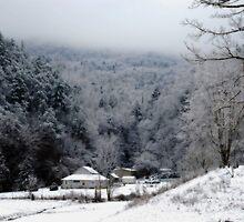 Snowy  Morn by Mattie Bryant