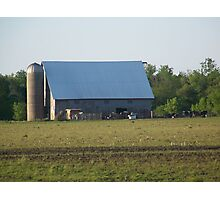 Pasture Gathering by the Barn Photographic Print