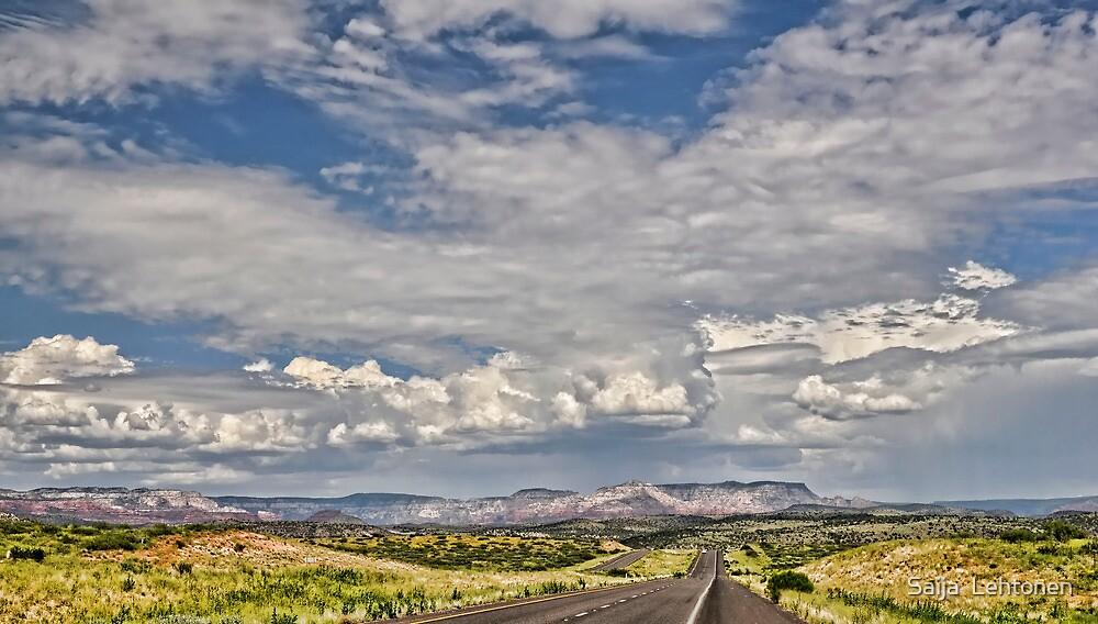 On the Road  by Saija  Lehtonen