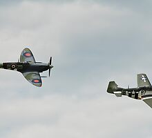 Spitfire and Mustang fighters planes by David Fowler
