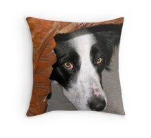 Benson  Throw Pillow
