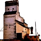 Fox Valley Grain Tower by Ellinor Advincula