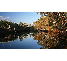 Reflective Creek Photographic Print