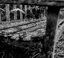 Cemetery bench by Dave Hare