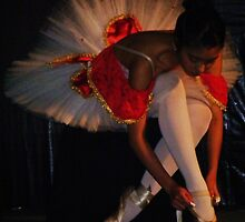 The Art in Ballet  the camera eye sees and paints by Alicia R. Bernal