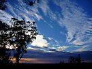 """Blue Dawn"" by debsphotos"