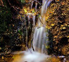 """""""Tiny ~ Falls"""" by Husky"""