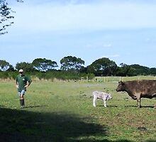 Kirkstall - Stokes Farm by EdsMum
