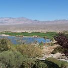 Golfing in the Desert  by Missy Yoder