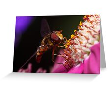 Hoverfly Diner Greeting Card