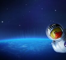 Maurice in space by Susana Weber
