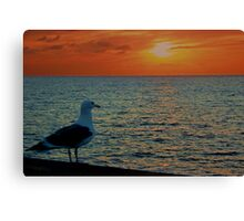 Sharing My Sunset Canvas Print