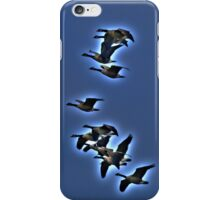 In Migration iPhone Case/Skin