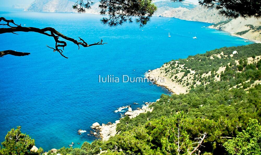 seascape-Crimea, cape Aya by Iuliia Dumnova