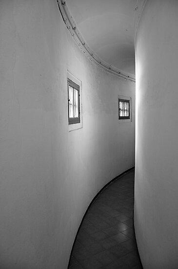 Narrow by Ainsley Kellar Creations
