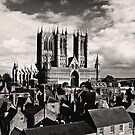 Lincoln Cathedral by Christopher Wardle-Cousins