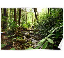 Fallen log over little river Poster