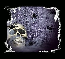 Web, Spider and the Skull by Eva Thomas
