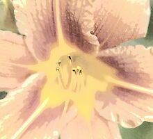 Orange Asiatic Lily Sketch1 by pASob-dESIGN