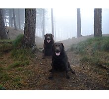 The girls at Formby Point. Photographic Print
